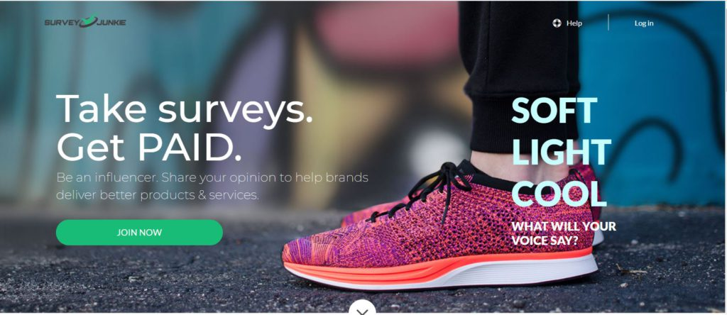 The Home Page Of Survey Junkie